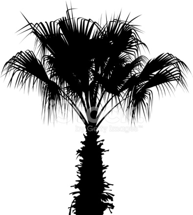Palm Tree Silhouette Stock Vector