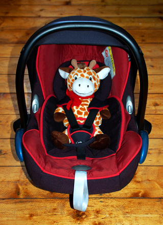 Giraffe in Baby Seat