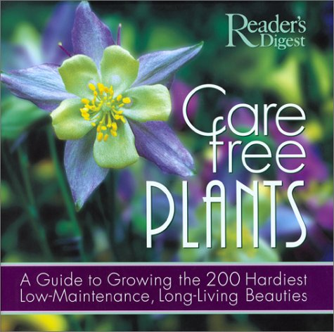 Care-Free Plants