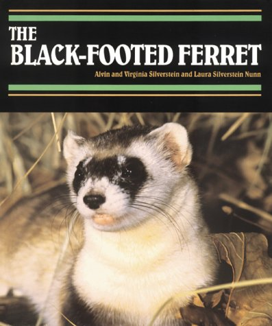 Black-Footed Ferret, The