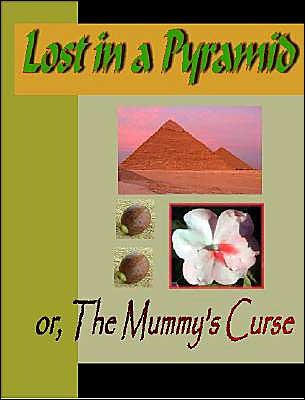Lost in a Pyramid or the Mummy's Curse