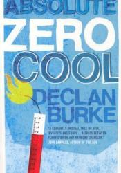 Absolute Zero Cool Book by Declan Burke