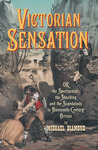 Victorian Sensation: Or, the Spectacular, the Shocking and the Scandalous in Nineteenth-Century Britain