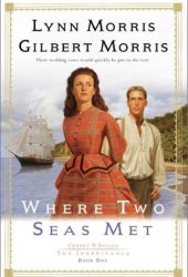 Where Two Seas Met (Cheney and Shiloh: The Inheritance #1) Pdf Book