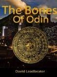 The Bones of Odin (Matt Drake, #1)