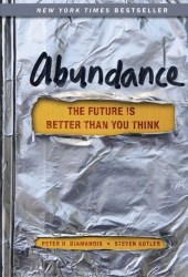 Abundance: The Future Is Better Than You Think Book