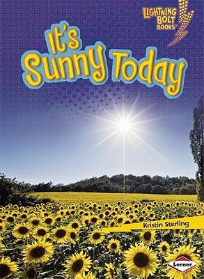 It's Sunny Today (Lightning Bolt Books)