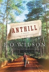 Anthill Book