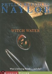 Witch Water (Witch Saga, #2) Book by Phyllis Reynolds Naylor