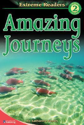 Amazing Journeys, Level 2 Extreme Reader