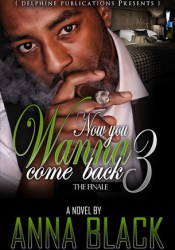 Now You Wanna Come Back 3 - The Finale Book by Anna Black
