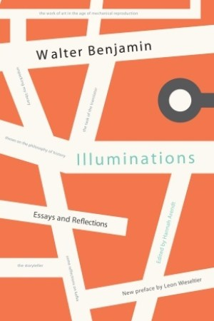 Illuminations: Essays and Reflections pdf books