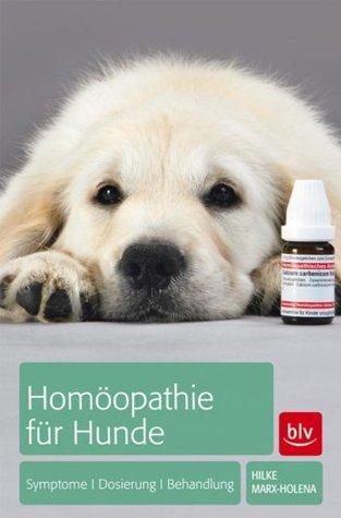 Homöopathie für Hunde: Symptome | Dosierung | Behandlung