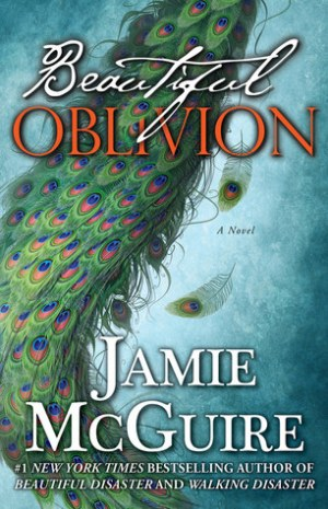 Spin-off Saturdays: The Maddox Brothers by Jamie McGuire