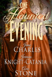 One Haunted Evening Book