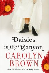 Daisies in the Canyon Book