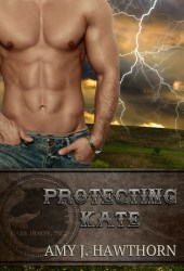 Protecting Kate (Dark Horse Inc., #1) Book