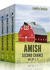Amish Second Chance Box Set 1 - 3