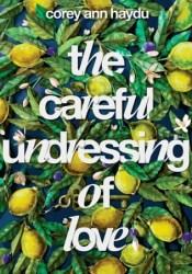 The Careful Undressing of Love Book by Corey Ann Haydu