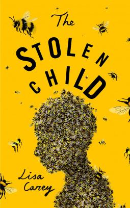Image result for the stolen child book Lisa
