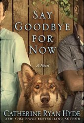 Say Goodbye for Now Book