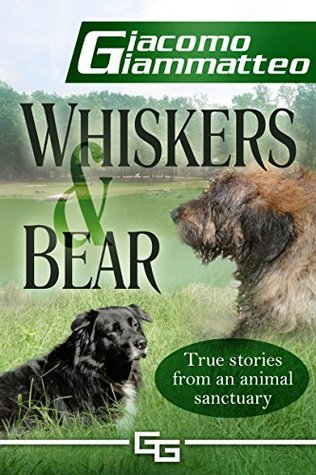 Whiskers and Bear (Sanctuary Tales #1)