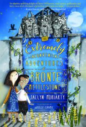 The Extremely Inconvenient Adventures of Bronte Mettlestone (Kingdoms & Empires, #1) Book