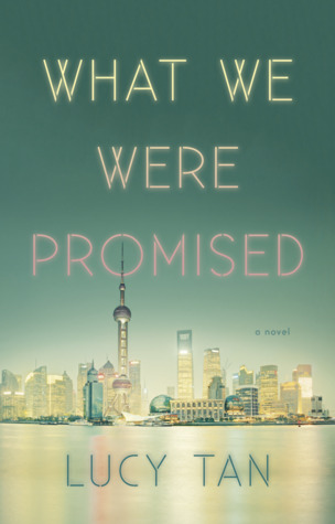 What We Were Promised Book Cover