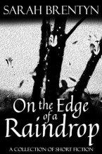 On the Edge of a Raindrop by Sarah Brentyn