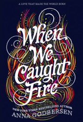 When We Caught Fire Book