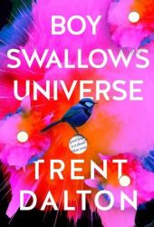 Boy Swallows Universe Book