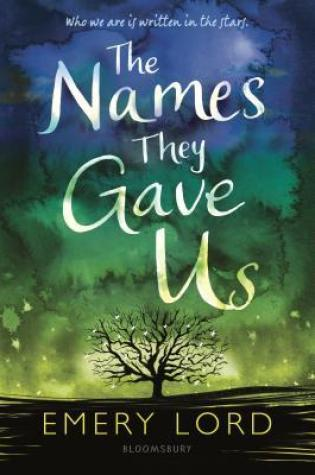 The Names They Gave Us PDF Book by Emery Lord PDF ePub