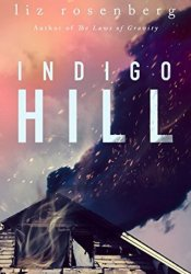 Indigo Hill Book by Liz Rosenberg