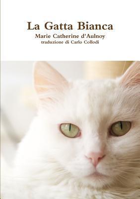 La gatta bianca
