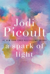 A Spark of Light Book