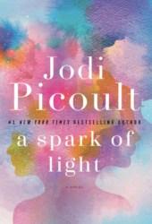 A Spark of Light Pdf Book