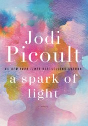 A Spark of Light Book by Jodi Picoult