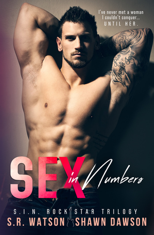 Sex in Numbers (S.I.N. Rock Star Trilogy #1)