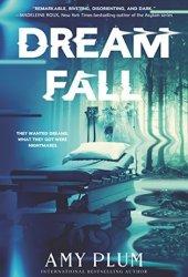 Dreamfall (Dreamfall #1) Book by Amy Plum