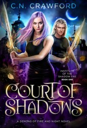 Court of Shadows (Institute of the Shadow Fae #1) Book