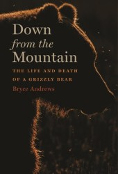 Down from the Mountain: The Life and Death of a Grizzly Bear Book