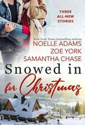Snowed in for Christmas (Holiday Acres, #2; Silver Bell Falls, #4; Pine Harbour, #8) Book