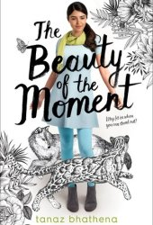 The Beauty of the Moment Book