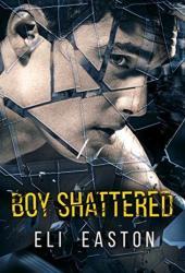 Boy Shattered Book