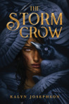 The Storm Crow