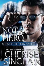 Not a Hero (Sons of the Survivalist, #1) Book