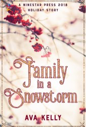 Family in a Snowstorm (Snow Globes, #2) Book