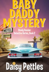 Baby Daddy Mystery (Shady Hoosier Detective Agency, #2) Book