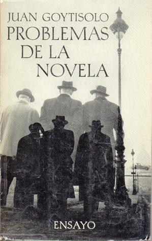 Problemas de la novela