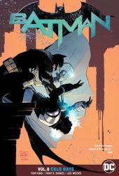 Batman, Volume 8: Cold Days Book